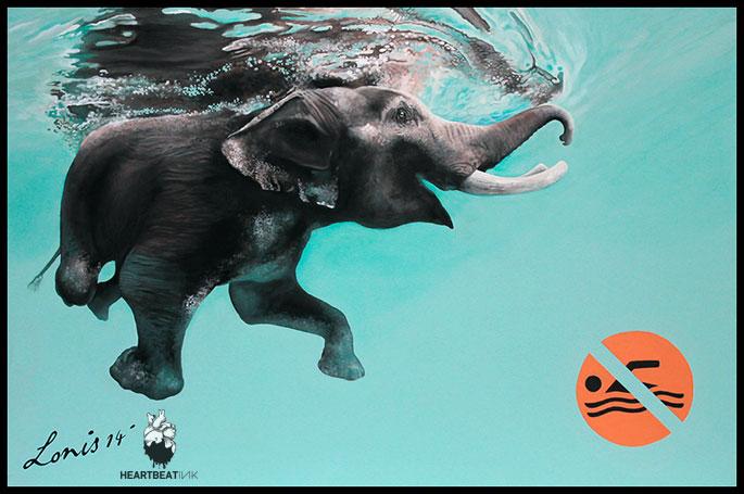 1.elephant_web